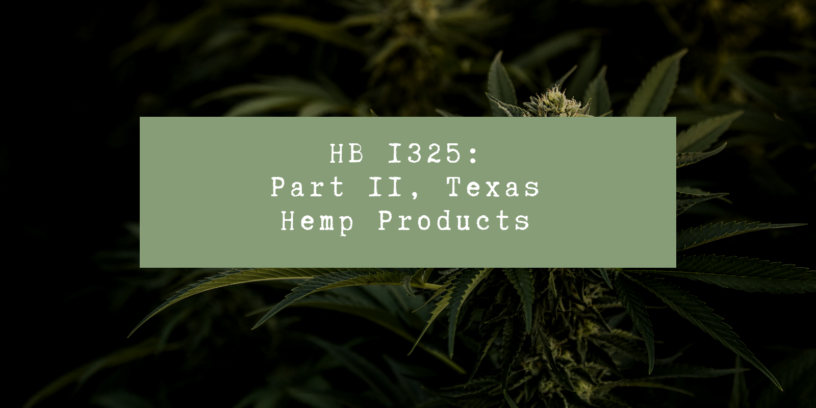 HB 1325: Texas Hemp Products, Part II