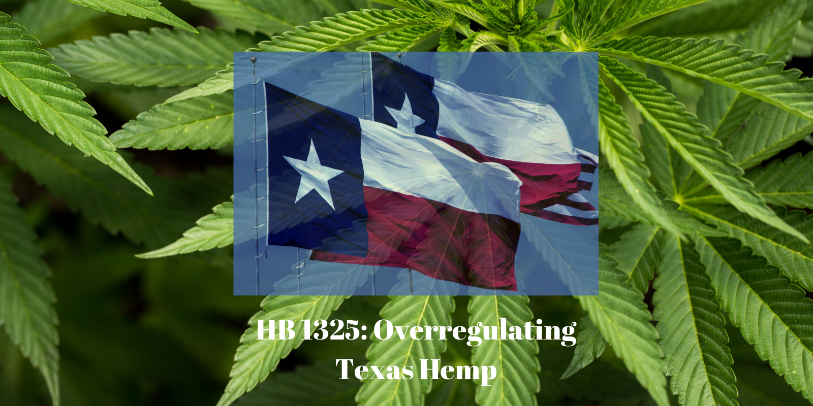 HB 1325: Texas Hemp Regulations Increase