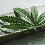 Financial Due Diligence for Hemp-Related Businesses