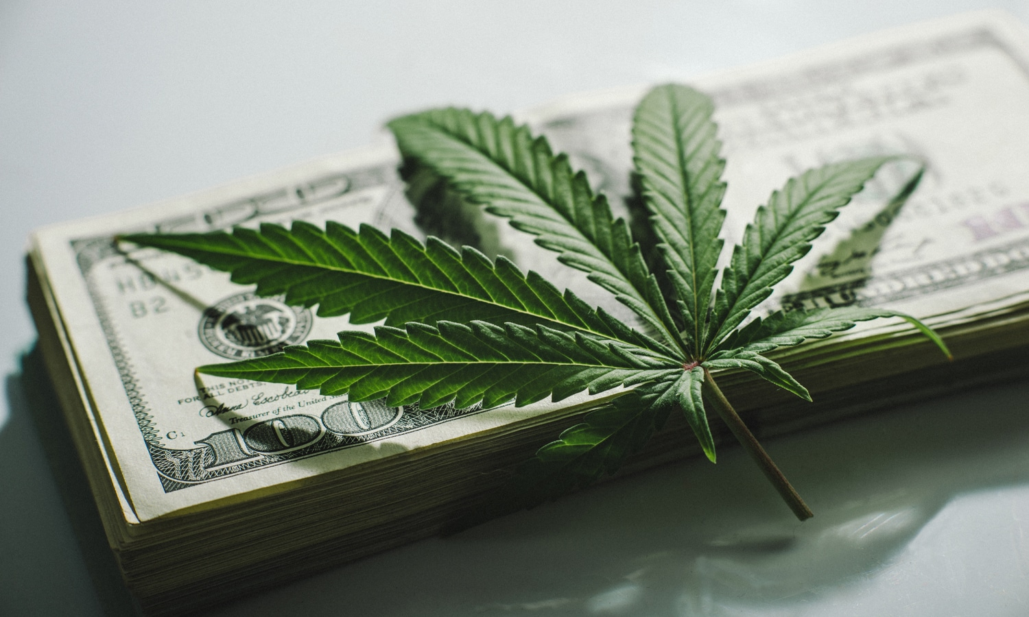 Financial Due Diligence for Hemp-Related Businesses: Banking Update