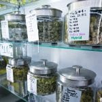 How to Open a Dispensary in Texas
