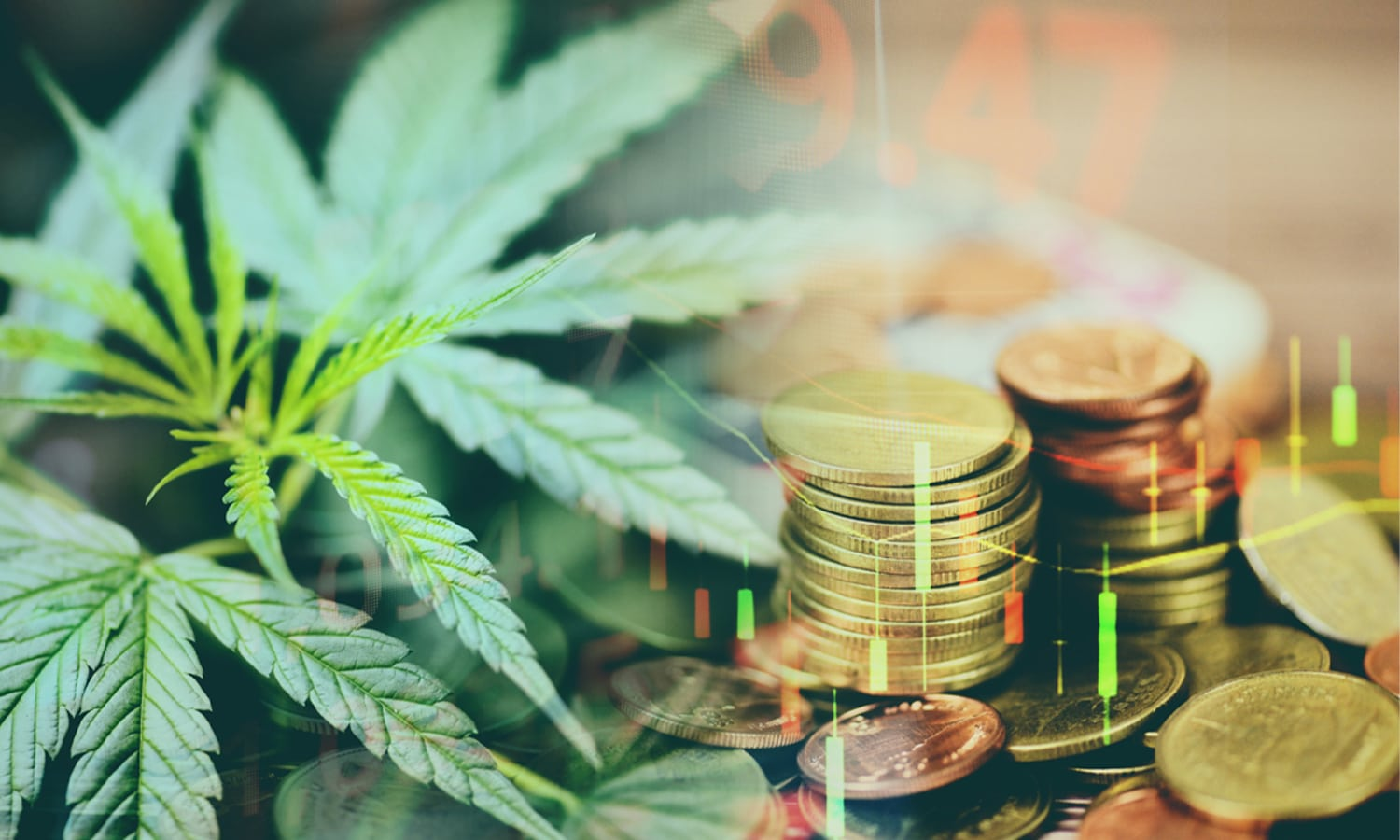 What to Expect from the Cannabis Industry in 2021